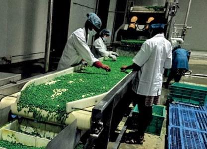 Evaluating Mega Food Park Scheme